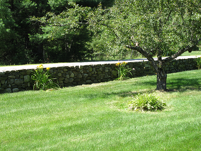 Free standing field stone wall by stone wall contractor New England Accents